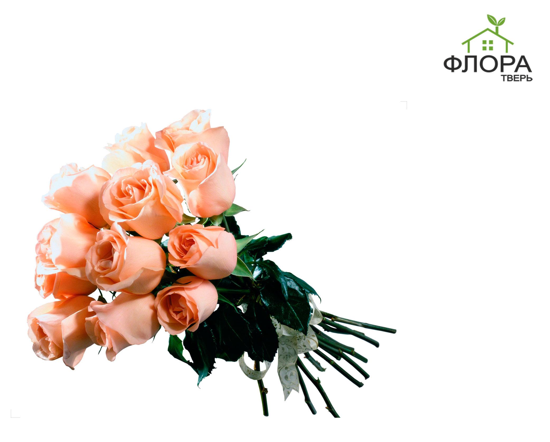 Оптовые магазины цветов в твери, ул. мантулинская вип букет